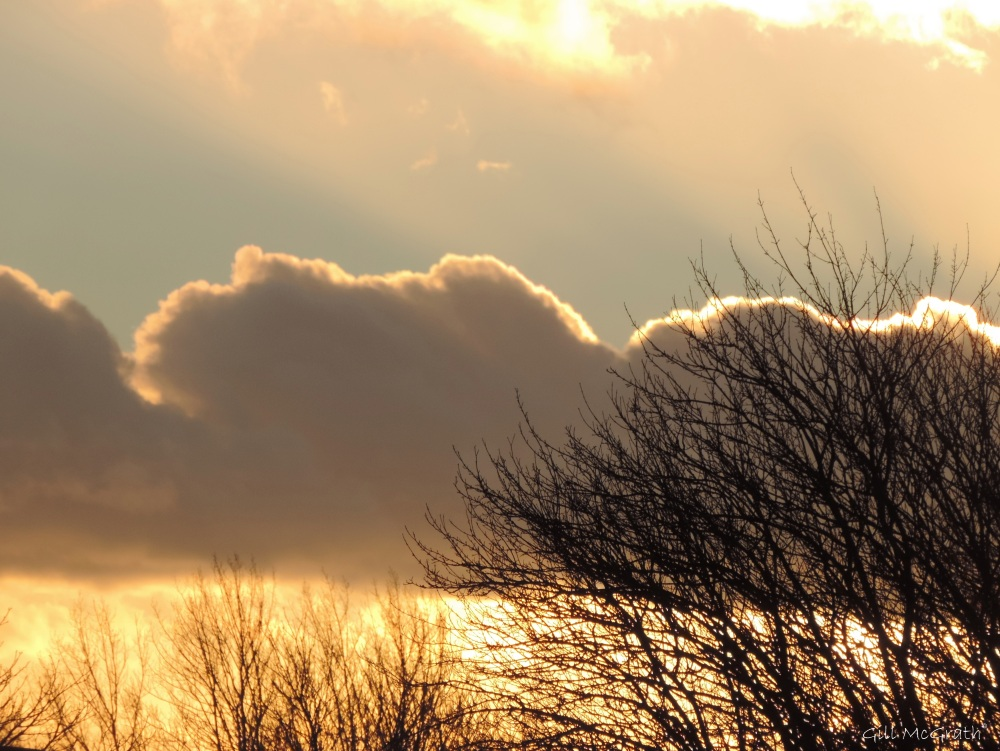 5 2016 01 07 clouds DSCN3638.jpg sig